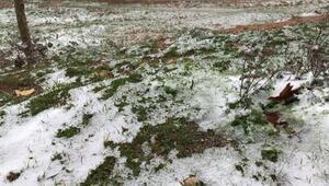 Spil Dağına kar yağdı