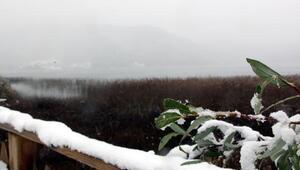 Bolunun yüksek kesimlerine ilk kar düştü (2)