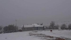 Sakaryaya mevsimin ilk karı düştü/ Ek fotoğraflar