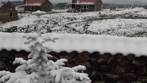 Ankara'ya mevsimin ilk karı yağdı