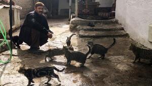 Hurda toplayarak, ailesine ve kedilere bakıyor