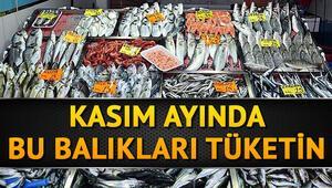 Kasımda hangi balıklar yenir Kasımda yenilmesi gereken balıklar