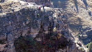 Kayalıklarda mahsur kalan 6 keçi, 1 hafta sonra kurtarıldı