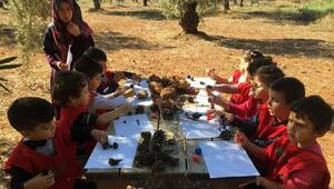 Zeytinpark, eğitimi sınıftan doğaya taşıyor