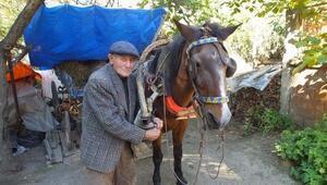 91 yaşında tarla sürüyor, ekip, biçiyor
