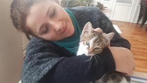 Yavru kediyi ezilmekten kurtarıp sahiplendi