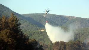 Boluda 2018 yılında 20,92 hektar ormanlık alan yandı