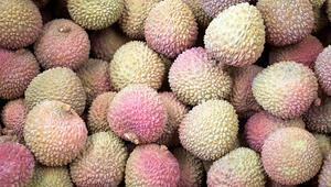 Dünyanın en kötü kokan meyvesi durian uçak boşalttırdı