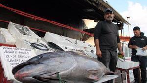 Kebap şehrinde balık keyfi