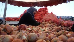 Soğanın fiyatı iki kata yakın arttı
