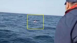 İzmirde göçmen teknesi battı