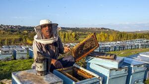 Bingöllü arıcı kışı geçirmek için arılarını Diyarbakıra getirdi