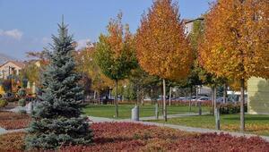 Kırşehir'de sonbahar manzaraları