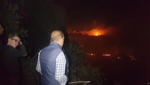 Son dakika... Antalyada 4 mahalleyi tehdit eden orman yangını