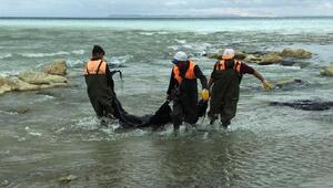Zift yüklü tanker devrildi, vatandaş ihbarı Van Gölünü kirlenmekten kurtardı