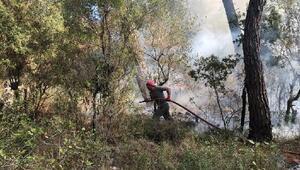 Orman yangınını gönüllü itfaiyeciler söndürdü