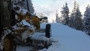 Fekede kar nedeniyle kapanan yollar açıldı