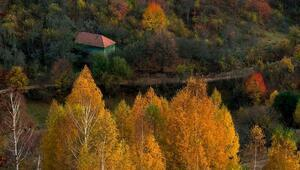 Drakulanın peşinde saklı cennet: Transilvanya