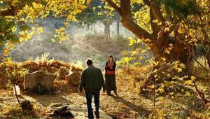 'Ahlat Ağacı' BluRay olarak çıkıyor