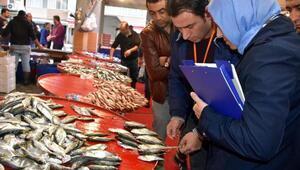 İzmirde balık tezgahlarında çinekop denetimi yapıldı