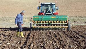 Yozgat yerel buğdaya yöneliyor
