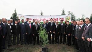 Öğretmenler günü hatıra ormanına 100 fidan
