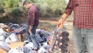 Hepsi ormanda bulundu Daha paketleri bile açılmamış, yüzlercesi...
