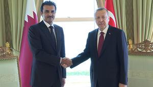 Erdoğan-Al Sani görüşmesi başladı