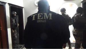 Şırnakta PKK/KCK operasyonu: 50 gözaltı