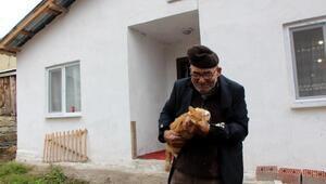 Ali dede, yeni evinde kedileriyle yaşıyor