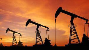 Ücretli poşetle binlerce varil petrol tasarruf edilecek