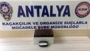 Antalyada 34 tüp kobra zehri ele geçirildi
