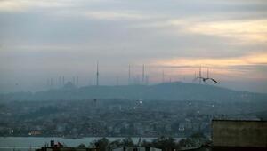 İstanbulda kış güneşi ve kuşlar...