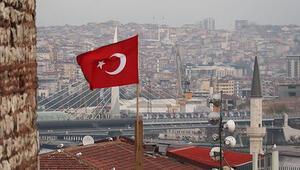 İstanbulda kış güneşi ve kuşlar