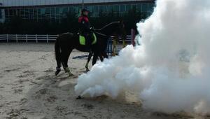 İstanbulun atlı polisleri göreve böyle hazırlanıyor