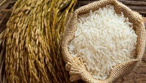 200 milyonluk Nijerya pirinç ithalatını azaltmayı hedefliyor