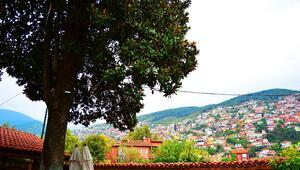 Bursa'nın merkezine seyahat