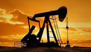 Adanada petrol arayacak