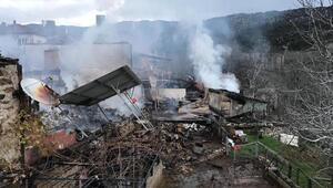 Köyde 3 ev ve 2 traktör yandı, 11 hayvan telef oldu/ Ek fotoğraflar
