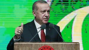 Son dakika... Cumhurbaşkanı Erdoğan İkinci 100 Günlük Eylem Planını açıkladı