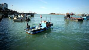 Balık rotasını Doğu Karadenize çevirdi