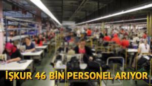 İŞKUR 46 bin personel alımı başvuruları nasıl yapılacak İŞKUR iş ilanları