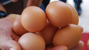 Tavuk ve yumurta ihracatı 1 milyar dolara yaklaştı
