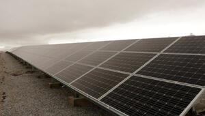 Selçuk Üniversitesi GES ile elektriğini kendisi üretiyor