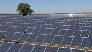 Türkiye, bölgenin yenilenebilir enerji ihracatçısı olma yolunda
