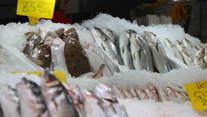 Yağışlar arttı balık fiyatları düştü