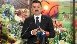 Bakan açıkladı: 50 hayvancılık projesine 37 milyon liralık hibe