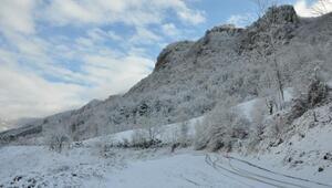 Küre Dağları Milli Parkında kış güzelliği