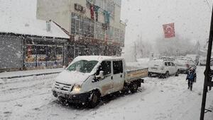 Van,Bitlis ve Hakkaride 596 yerleşim biriminin yolu kardan kapandı(2)