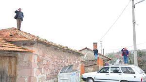 Ağaç, çatı ve otomobil her şeyin üzerine çıkıyorlar Tek amaçları ise...